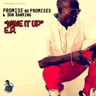 Promise No Promises - Youtube